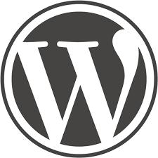 WordPressLogo_WordPress_Security