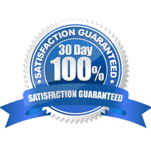 Lodo Web Premium WordPress Support 100% Guarantee