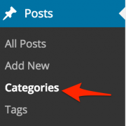 LoDo_Categories_Post_Meta_Tags_WordPress