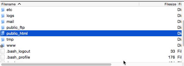 Public_HTML_folder_LoDo_Web